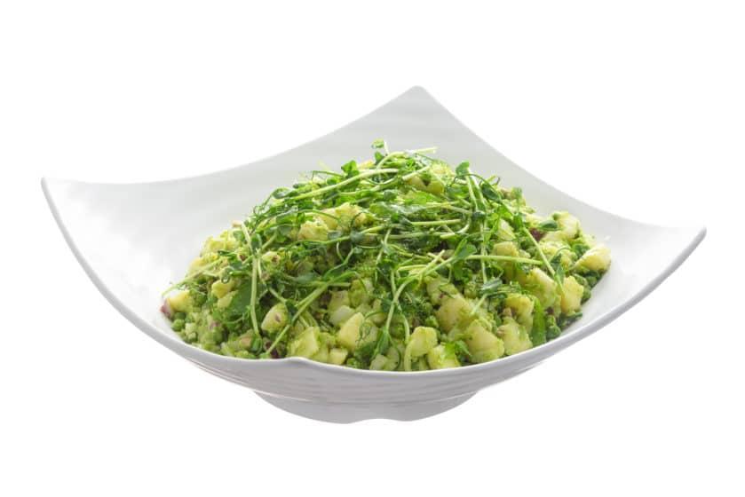 vegaaninen vegaani pitopalvelu kasvis